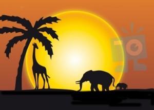 L'Afrique : une destination magique dans destination Afrique africa24-300x215