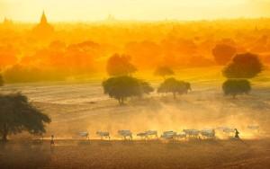 Birma.com pour réserver en Birmanie dans destination Asie bagan11-300x188